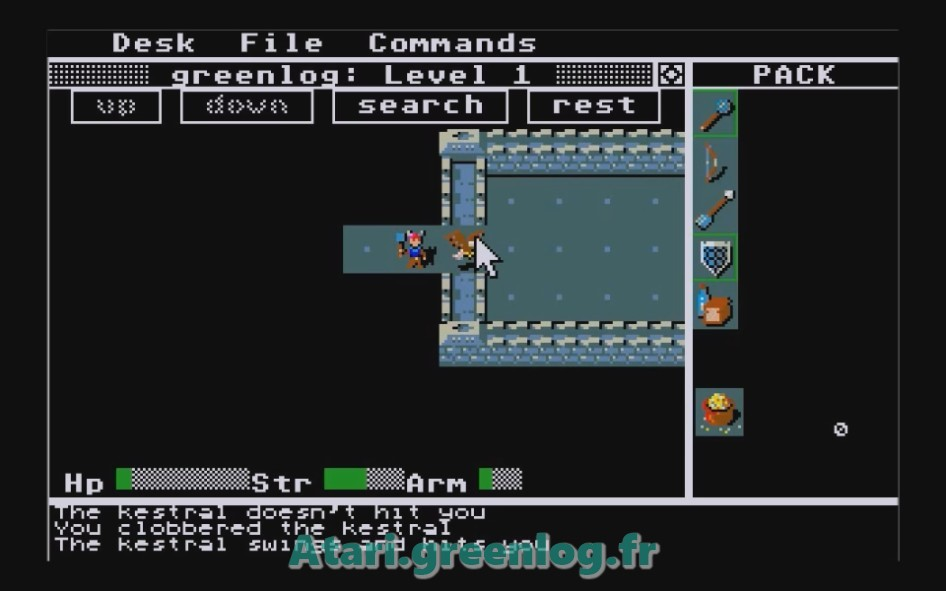 Rogue : Impression d'écran 1