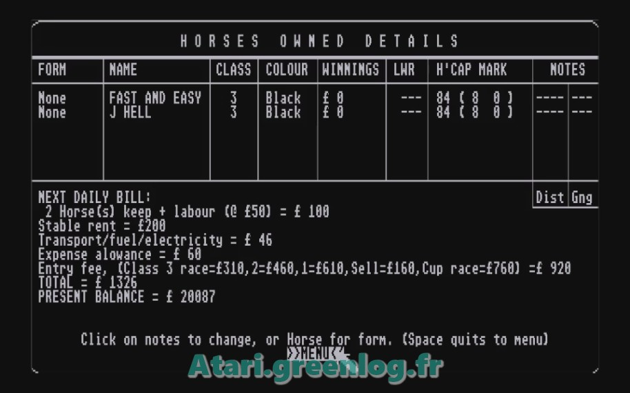 Horse Racung Simulator : Impression d'écran 11