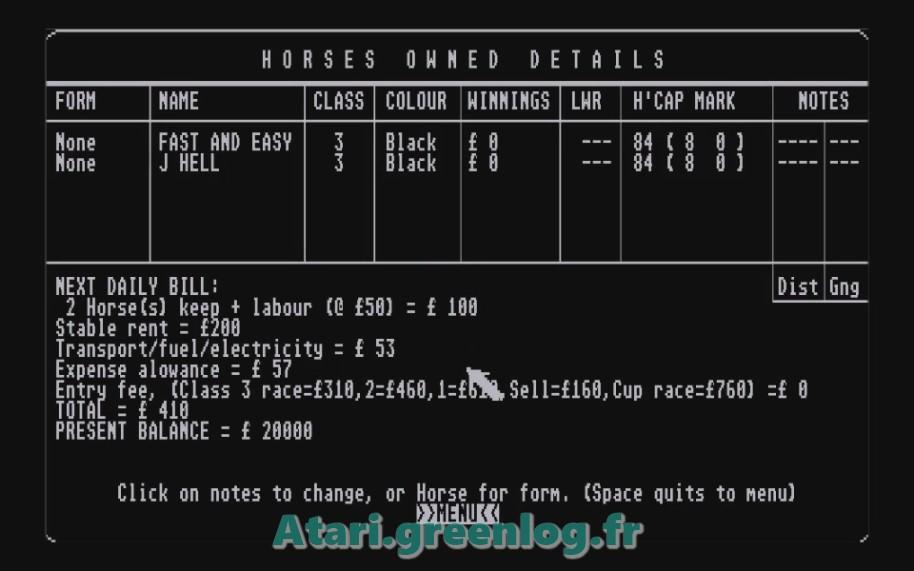 Horse Racung Simulator : Impression d'écran 3