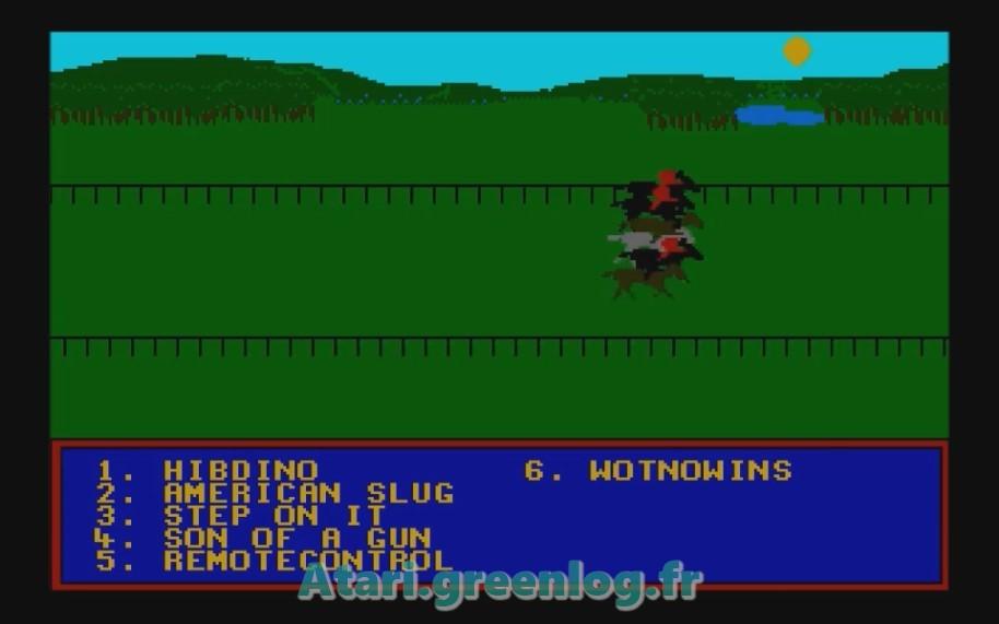 Horse Racung Simulator : Impression d'écran 7
